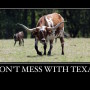 """If Texas is considered a """"hostile"""" state now – just wait…"""